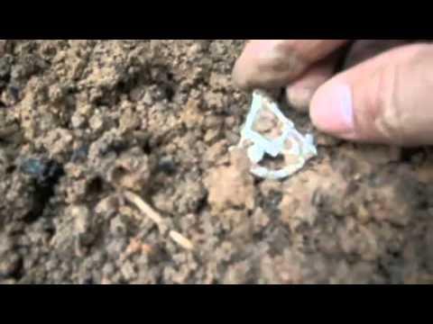 Masonic Pin Recovery